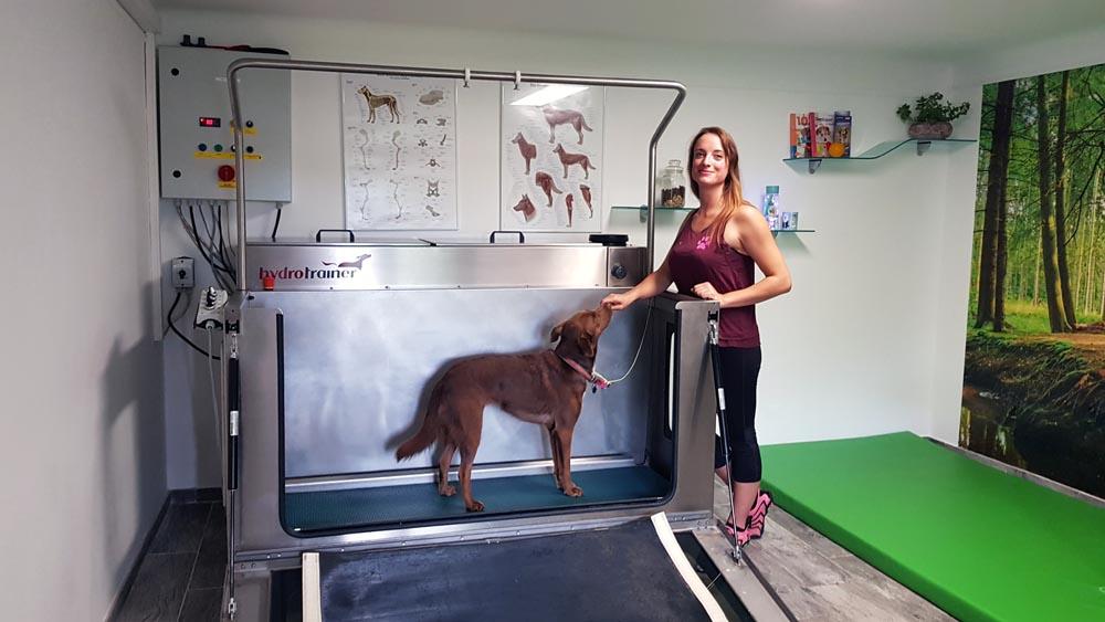 unterwasserlaufband hundephysiotherapie